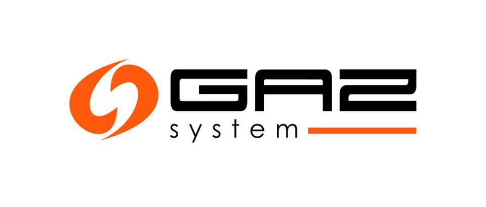 Gaz system.jpeg